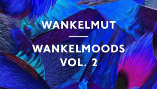Wankelmoods Vol. 2 <br><h10>Wankelmut and Poesie Musik go for Round 2</h10>