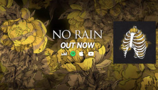 "Anna Leyne / New Single<br><h10>""Anna Leyne &#038; Elènne &#8211; No Rain""</h10>"