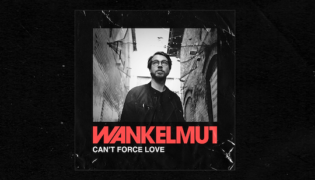"Wankelmut / New Single<br><h10>""Can't Force Love""</h10>"